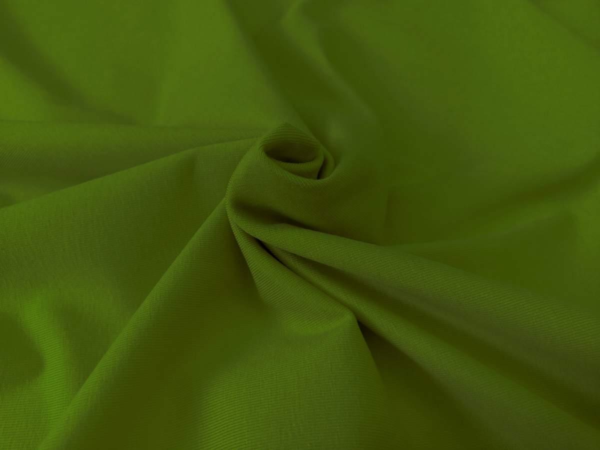 Biojersey dunkelgrün Foto