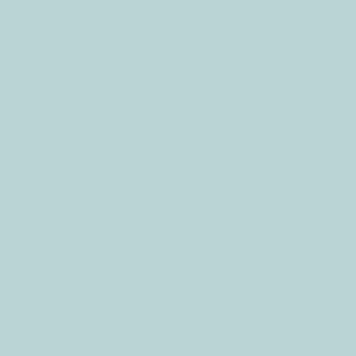 502-001 mint BC