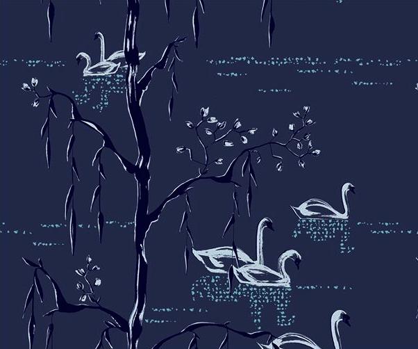 Schwanensee bei Nacht marine