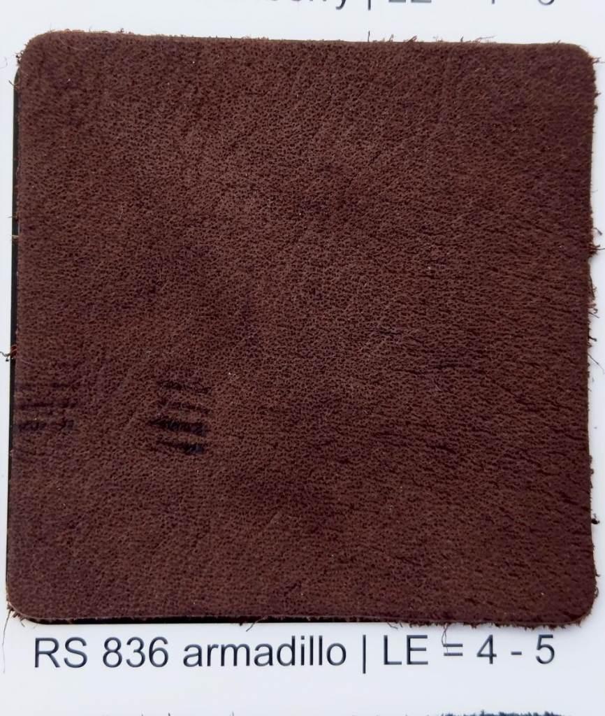 armadillo Rodeosoft