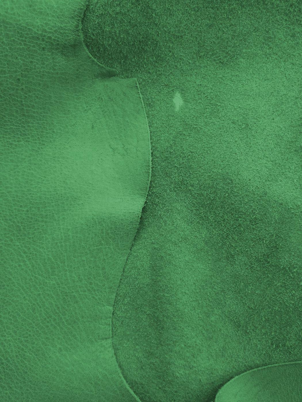 Leder_2_grün