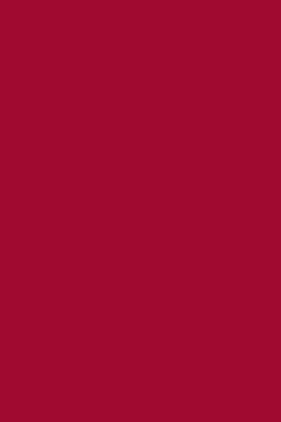 Modalsweat kirschrot 025