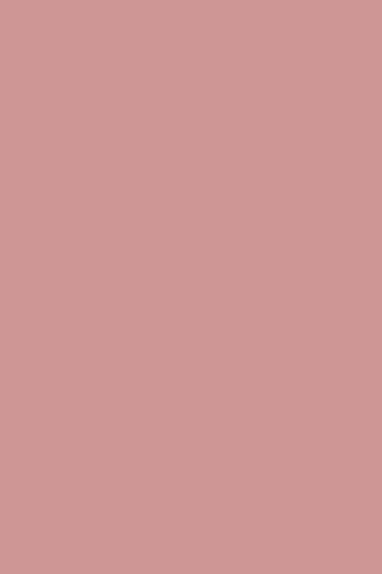 010 dusty rose