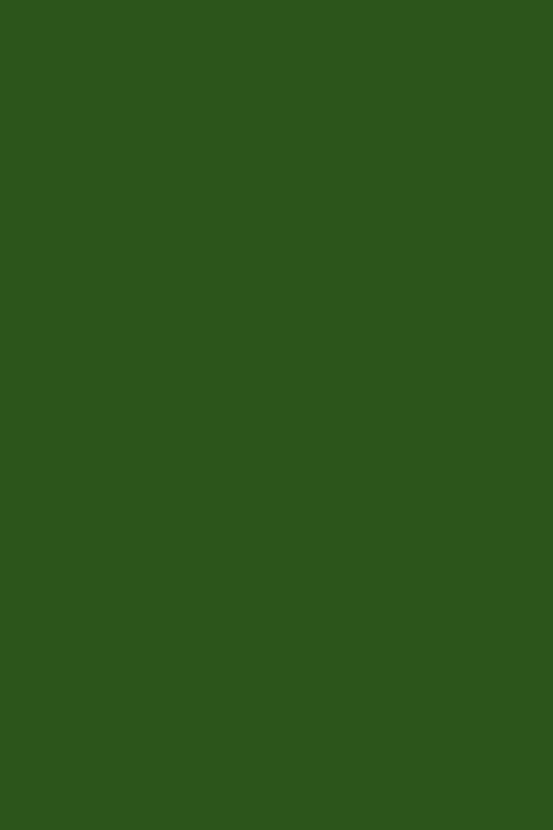 021 grün