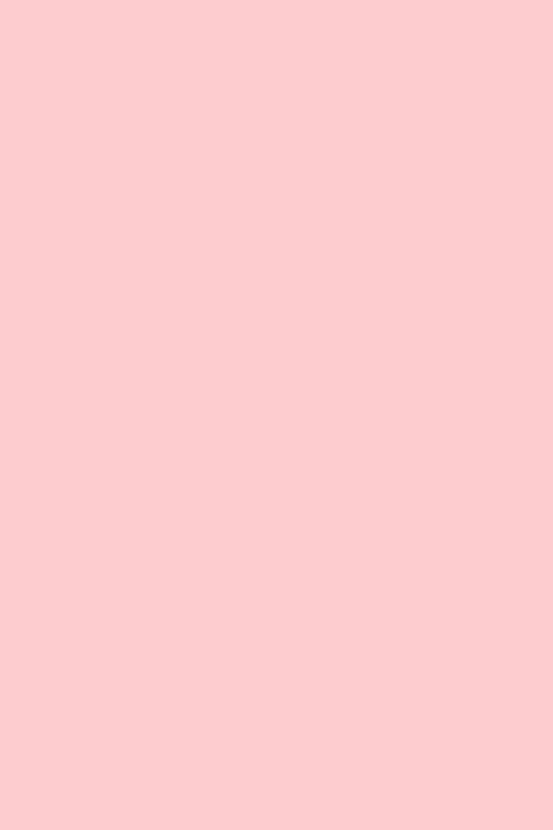 pastellrosa 058