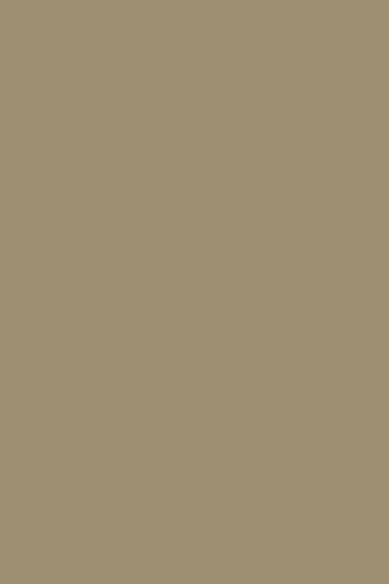 taupe beige 007
