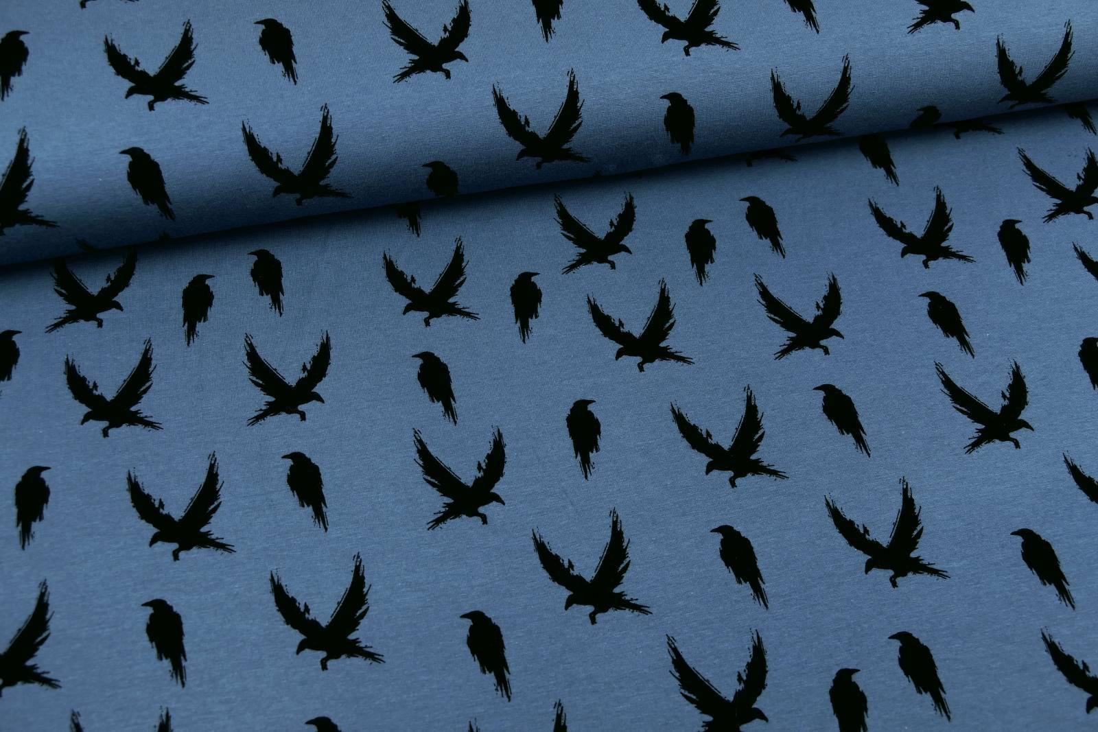 500-205_Winter Crow_dusty blue